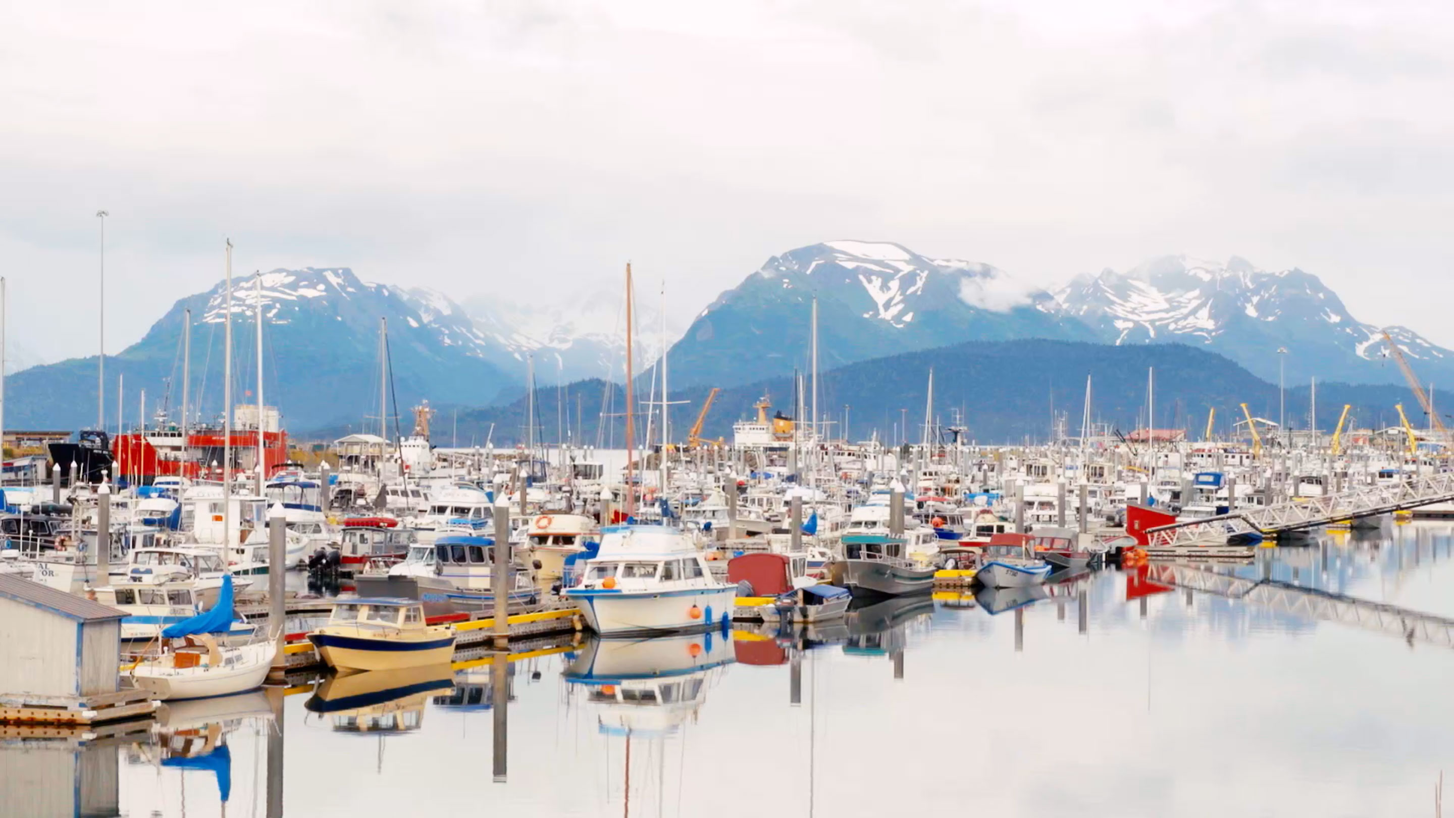 home alaska boat harbor