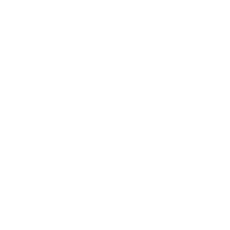 ethic icon