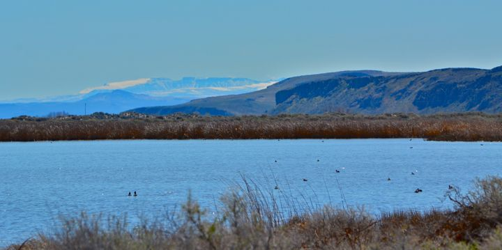 Harney County lake scenery
